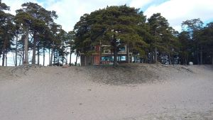 Cafébyggnaden Tulluddens oas (vår 2017)