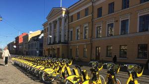 Stadens gula lånecyklar på Senatstorget.