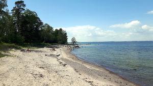 Strand på Mjölö