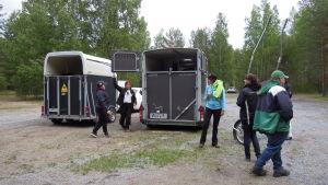 Transportvagnar för hästar