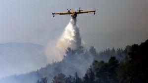 Grekland hoppas särskilt att EU-länder kan bistå med flygplan för släckningsarbetet