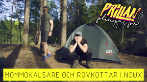Prillan Plingar På Noux avsittets coverbild. Prillan framför ett grönt tält med surmulen min och Matias Anthoni i bakgrunden.