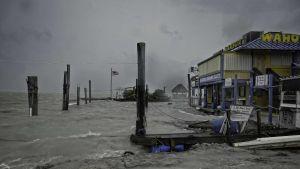 Orkanens första vågor orsakade skador vid Whale harbour i Florida Keys.