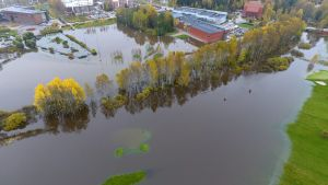 Stora delar av Kyrkträsk i Esbo ser ut som en sjö.