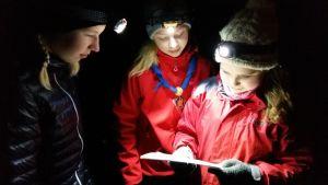 Tre scouter lyser med sina pannlampor upp sin orienteringskarta under en nattorientering.