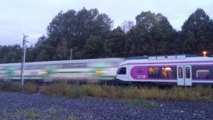 Paikallisjuna seisoo Siuntion seisakkeella. IC-juna ohittaa.