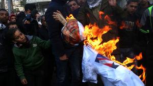 Palestinska demonstranter bränner en docka som föreställer president Donald Trump i protest mot att Trump tänker flytta USA:s ambassad från Tel Aviv till Jerusalem