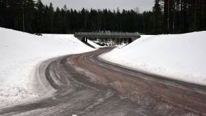 Mangårdsvägen i Raseborg.
