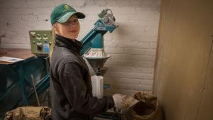 Vihreään lippalakkiin pukeutunut tyttö kaataa viljaa paperipussiin.