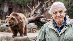 Brittiläisessä dokumenttisarjassa Sir David Attenborough tutustuu lajeihin, jotka hämmästyttävät ja ihastuttavat erikoisuudellaan.