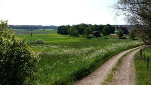 Åkrarna vid Gundby gård i Kimito lyser gröna.