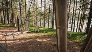 Suurikokoinen soitin, jossa pylväisiin kiinnitetty köysiä ja köysiin metallilevyjä, nimeltään linnupers, Soivassa Metsässä Suomussalmella.