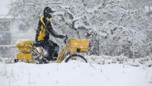 En postiljon cyklar genom snön i Riedlingen i södra Tyskland.