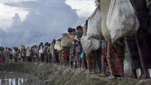 Rohingyer som flydde över floden Naf från Burma till Bangladesh i oktober 2017.