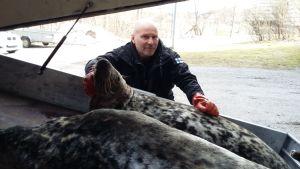 Niklas Ulenius utbildar jägare i säljakt
