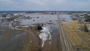 översvämningar
