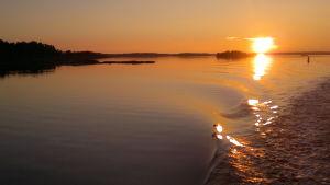 Solnedgång i Åbolands skärgård med solen glittrande på vågsvall.