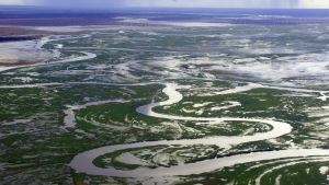 Kongojoki on Afrikan sykkivä valtimo ja äärimmäisyyksien joki. Dokumenttisarja myyttisestä alueesta.