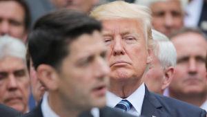 Donald Trumpin ensimmäinen vuosi Yhdysvaltojen presidenttinä on ollut täynnä ristiriitoja.