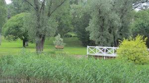 Pumpviken i Karis på sommaren. En vit bro över ett ganska igenväxt vatten. Bron leder över till en liten ö, holme mitt i viken.