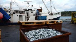 Fett läcker ut när man pumpar över fisk från trålbåtarna.