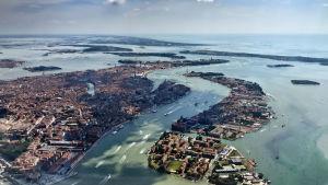 Venetsian laguunissa ja saaristossa asuu runsas eläimistö.