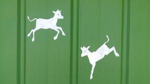 Busskuren i Korsnabb i Houtskär är målad i grönt, med vitmålade kalvar på väggen.