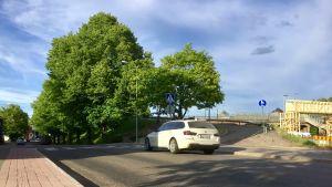 En gata med lövträd vid vägrenen invid en brobank. En vit bil kör på gatan. Bron syns till höger. Sommar,