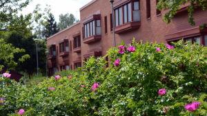 Ebbo åldringhem i Borgå