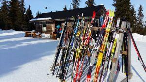 Ett tjugotal par färggranna skidor står lutade mot en ställning utanför en skidstuga, där skidåkare sitter på matpaus.