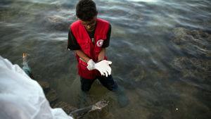 En medlem av libyska Röda halvmånen tog hand om en drunknad man som flöt i land öster om Tripoli i fjol somras.