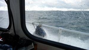 Hård vind till sjöss.