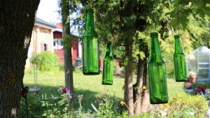 Gröna glasflaskor hänger i ett träd
