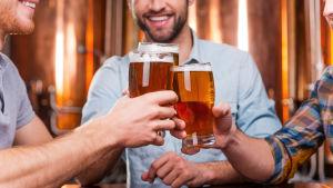 Tre vänner skålar med sina ölstop i en pub.