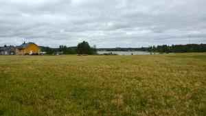 Ett landskap som består mest av gräs och vyn mot en sjö. Till vänster några hus.