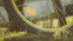 pyörän rengas ruohikolla