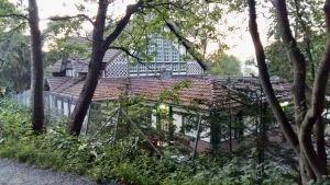 Biologiska museet i Åbo sett från Idrottsparken.