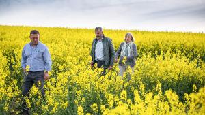 Ranskalaisdokumentti tutkii biopolttoaineiden maailmanlaajuista tuotantoa ja taistelua markkinoista.