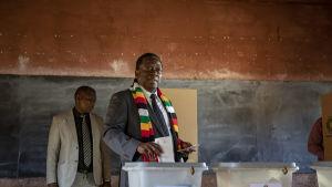 Landets sittande president Emmerson Mnangagwa röstar.