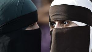 Demonstranter protesterar mot danskt burkaförbud.