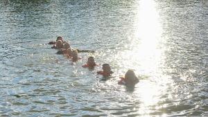 Flera personer simmar på rad i vattnet.