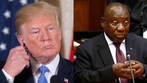 Bild av Cyril Ramaphosa och Donald Trump