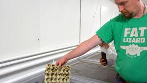 Panu Ollikkala visar upp syrsom som är färdiga.