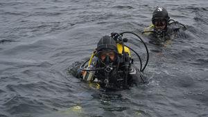 Dykare på forskningsexpedition i Kvarken