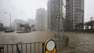 Många bostadsområden översvämmades i Hongkong men byggnaderna har byggts med tanke på stormar och orkaner som årligen drabbar staden