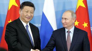 Kinas president Xi Jinping och Rysslands president Vladimir Putin skakade hand efter samtal i samband med ett ekonomiskt forum i Vladivostok den 11 september.