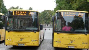 Fronterna på två gula bussar som trafikerar på linje 1.