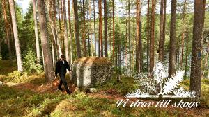 Vi drar till skogs-bild
