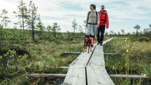 Luontomatkailusarja Metsien kätkemä vaeltaa toisella tuotantokaudella pitkin eri aikakausien kulkuväyliä.