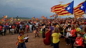 mielenosoittajia pellolla.